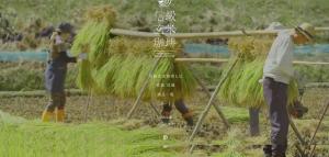 screencapture-nobushina-coffee-1472459056662